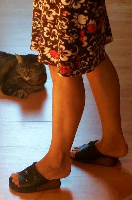 piedi che indossano scarpette da geisha